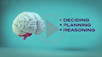 از چند درصد مغز خود استفاده می کنید؟